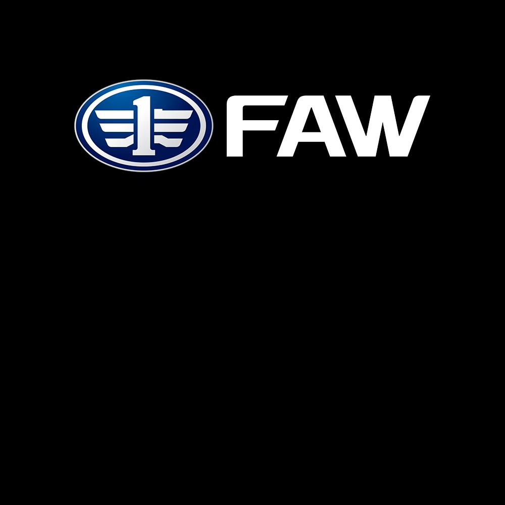 FAW легковые Страница портфолио